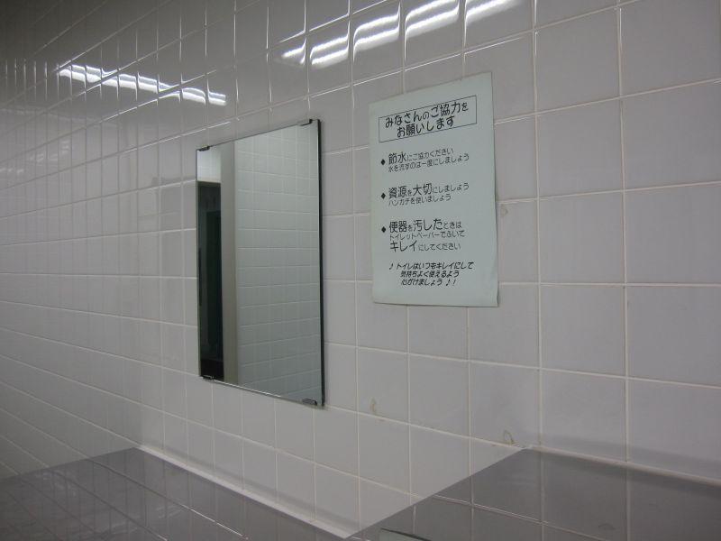 toilet_mirror1