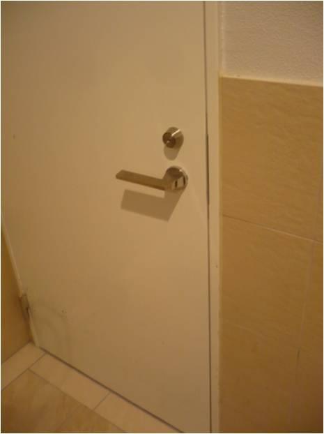 一見すると普通のドアっぽいが